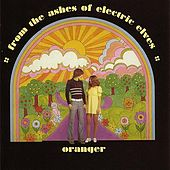 From the Ashes of Electric Elves by Oranger