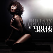 Did I Say I Love You by Camille Jones