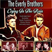 Crying In The Rain by The Everly Brothers