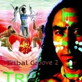 Tribal Groove 2 by Various Artists