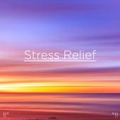 Stress Relief de Nature Sounds Nature Music (1)