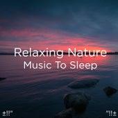 Relaxing Nature Music To Sleep by Deep Sleep (1)