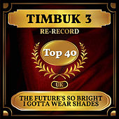 The Future's So Bright I Gotta Wear Shades (UK Chart Top 40 - No. 21) von Timbuk 3