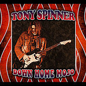 Down Home Mojo by Tony Spinner