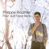Pour qu'il fasse beau von Philippe Routhier
