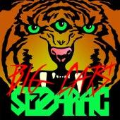 Big Cats von Sezarac