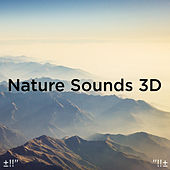 Nature Sounds 3D by Asian Traditional Music