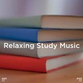 Relaxing Study Music von Rain Sounds