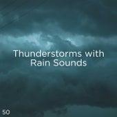 50 Thunderstorms With Rain Sounds de Thunderstorm Sound Bank