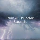 50 Rain & Thunder Sounds by Thunderstorm Sound Bank