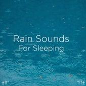Rain Sounds For Sleeping von Rain Sounds