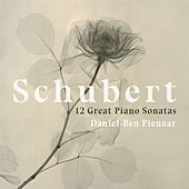 Piano Sonata in A Major, D. 664: I. Allegro moderato von Daniel-Ben Pienaar