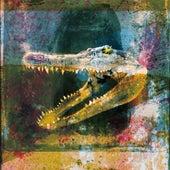 Dry Fantasy by Mogwai