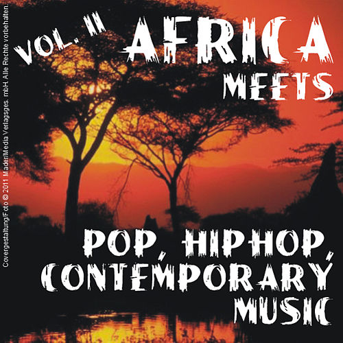 Africa Meets Pop / Hiphop / Contemporary - Vol. 2 by Various Artists