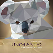 Uncharted Vol.17 by Various Artists