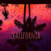 California de Wolfgang Sanchez