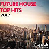 Future House Top Hits Vol.1 de Various Artists