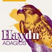 Haydn Adagios de Various Artists