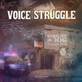 Voice Of The Struggle de Cash Click Boog