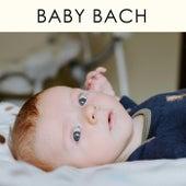Baby Bach von Walther Cuttini