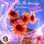 We Can Be The Universe (StoneBridge Remix) de Sevi Ettinger