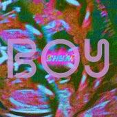 Boy de Shy'm