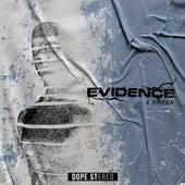 A Choosen Path by Evidence