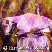 43 Harmonious Bedroom by Deep Sleep Music Academy