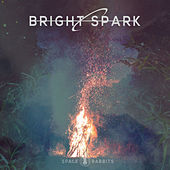 Bright Spark by Various Artists