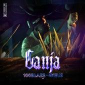 Ganja by 100 Blaze