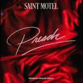 Preach (Penguin Prison Remix) by Saint Motel