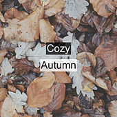 Cozy Autumn by Rain Sounds (2)