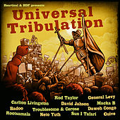 Heartical & Bdf Present: Universal Tribulation by Various Artists