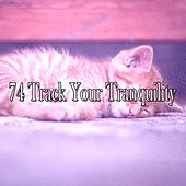 74 Track Your Tranquility by Sounds Of Nature