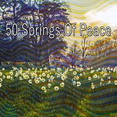 50 Springs of Peace von Entspannungsmusik
