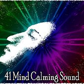41 Mind Calming Sound by Ocean Waves For Sleep (1)
