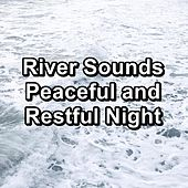 River Sounds Peaceful and Restful Night by Meditation Spa