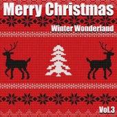 Merry Christmas - Winter Wonderland Vol.3 von Various Artists