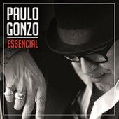 Essencial de Paulo Gonzo