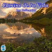 Camino de la Vida by Los Relicarios