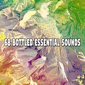68 Bottled Essential Sounds by Best Relaxing SPA Music