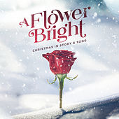 A Flower Bright - EP by Lifeway Worship