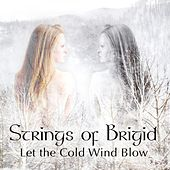 Let the Cold Wind Blow by Strings of Brigid