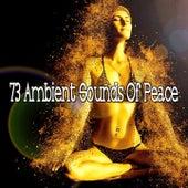 73 Ambient Sounds of Peace von Yoga