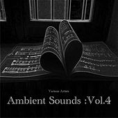 Ambient Sounds :Vol.4 de Various Artists
