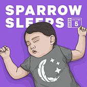 2020 Volume 5: Lullaby Renditions of Carly Rae Jepsen, Tiny Stills, Stand Atlantic di Sparrow Sleeps