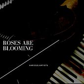 Roses Are Blooming by Paul Gayton, The Kendall Sisters, Dick Glasser, The Sensations, Davey Jones, The Monotones, Larry Diamond, Ray Stanley, The Fairlanes, Billy Stewart, The Ravens, Clifton Chenier, Clarence Henry, The Silva-Tones, Earl Hooker, Jody Williams
