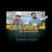 Noche Especial (Cover) fra Los Rapidos de Chihuahua