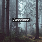 Woodland by Nature Sounds (1)