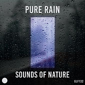 Pure Rain by Sounds Of Nature